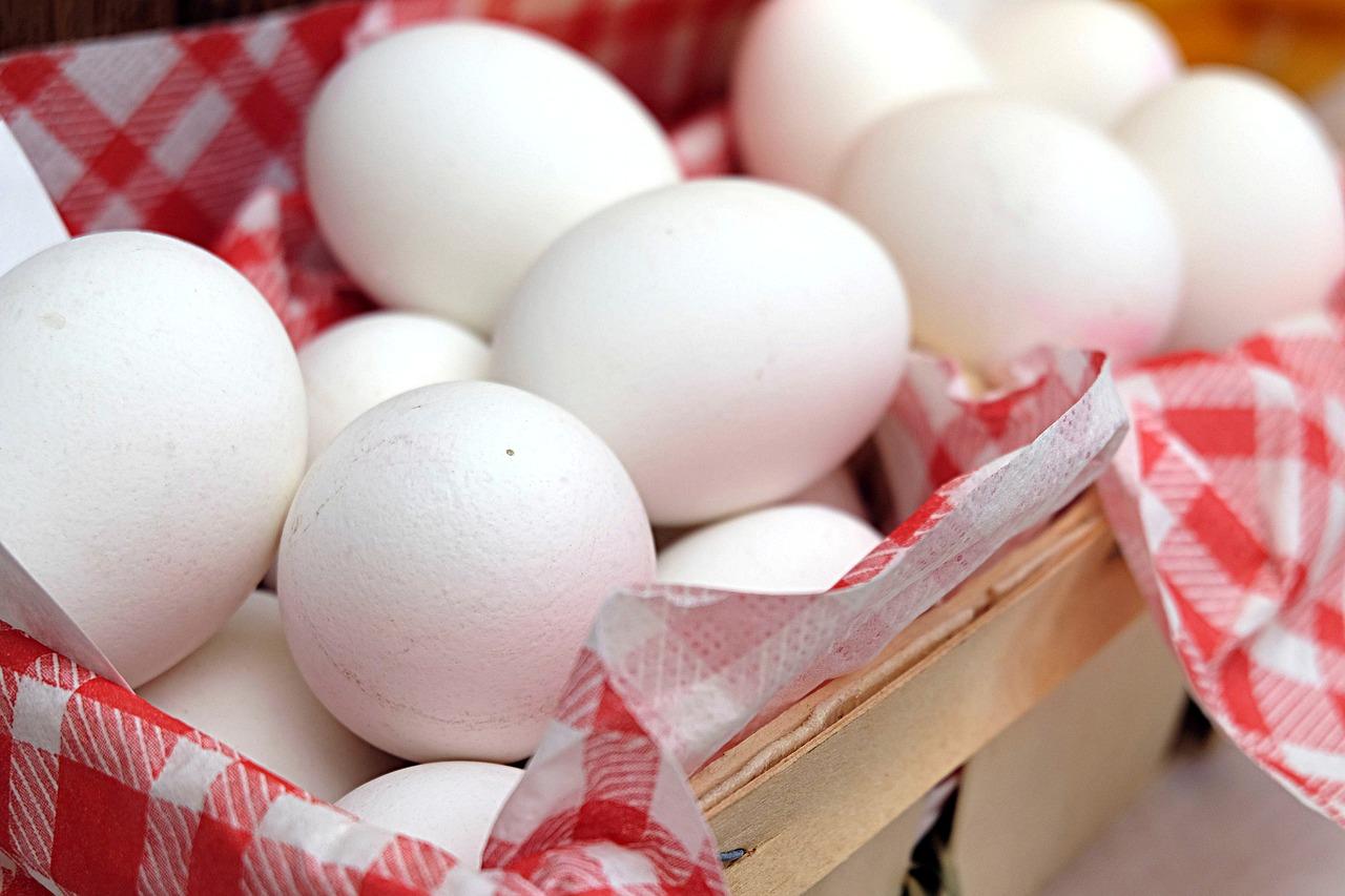 卵は一つのカゴに盛れ